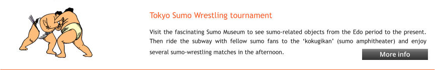 Tokyo Sumo Wrestling tournament Visit the fascinating Sumo Museum to see sumo-related objects from the Edo period to the present. Then ride the subway with fellow sumo fans to the 'kokugikan' (sumo amphitheater) and enjoy several sumo-wrestling matches in the afternoon.   More info