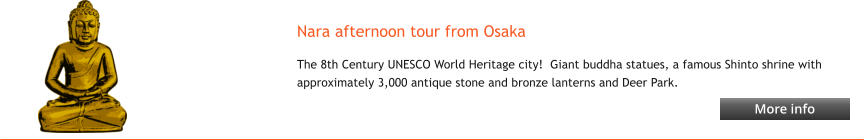 Nara afternoon tour from Osaka The 8th Century UNESCO World Heritage city!  Giant buddha statues, a famous Shinto shrine with approximately 3,000 antique stone and bronze lanterns and Deer Park.   More info